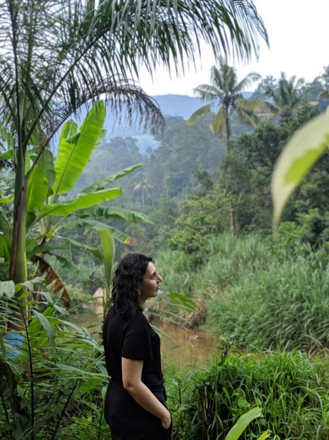 Spice Gardens, Munnar